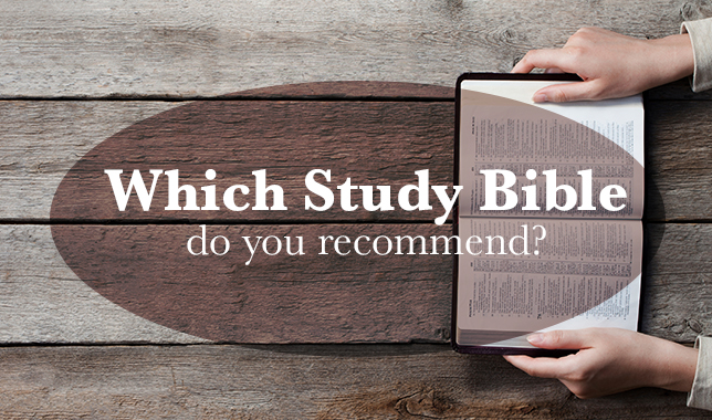 which study bible